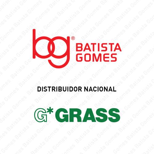 BG * GRASS